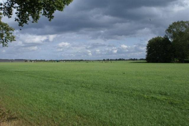 Mooi veld