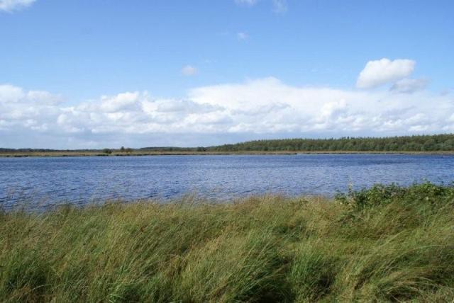 Een Pingo aan de Leidijk